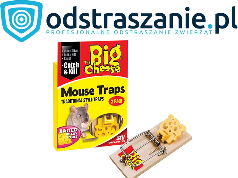 klasyczna łapka na mysz