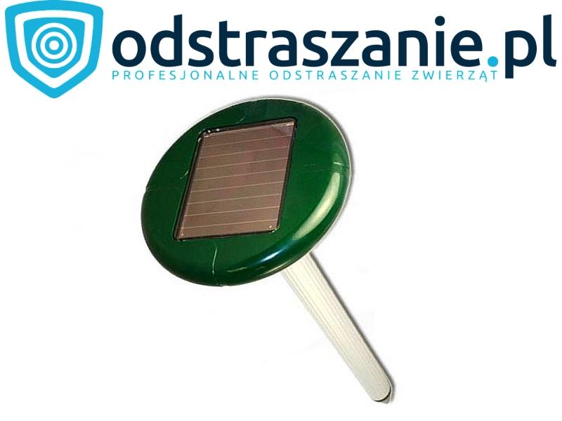 solarny odstraszacz kretów