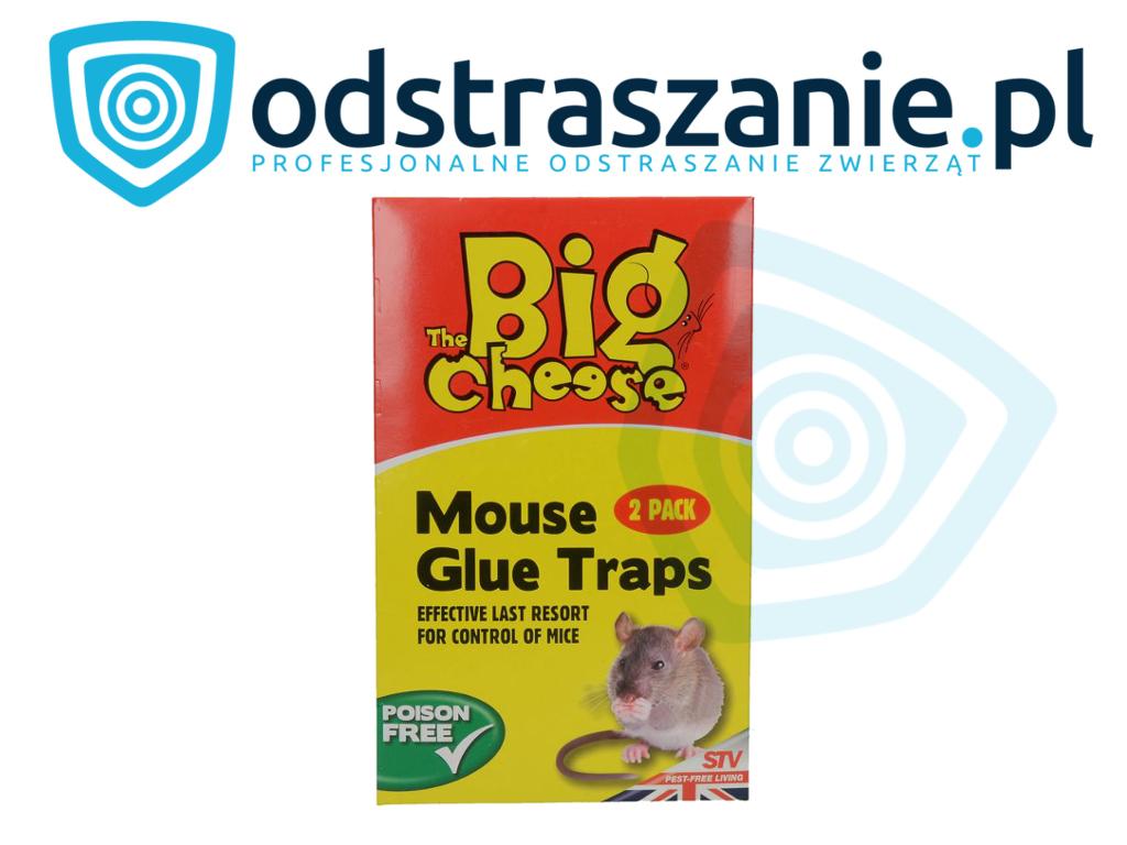 klej na myszy